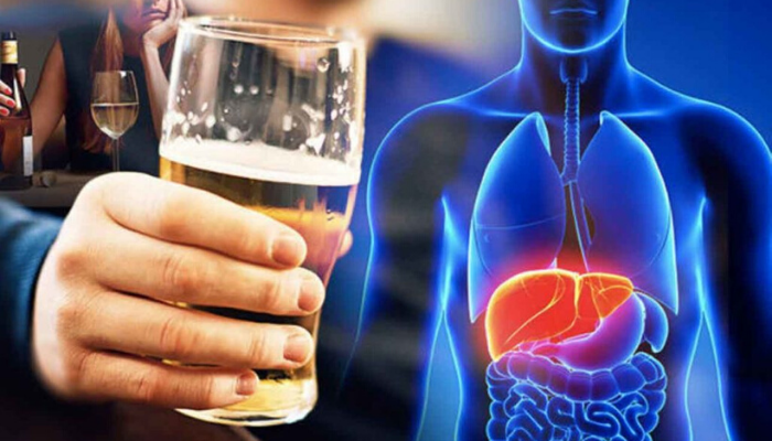 The Liver and Its Responsibility For Eliminating Alcohol