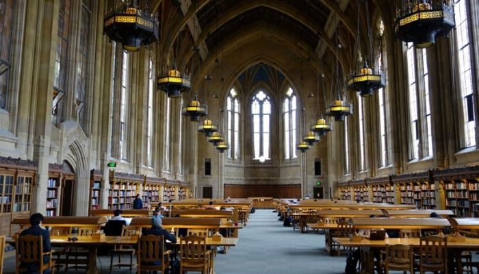 Top 5 Business Schools That Will Make You a True Professional