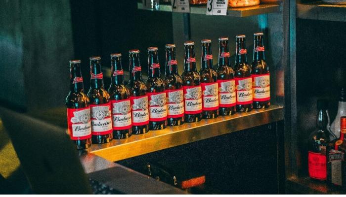 Never Drink Budwesier